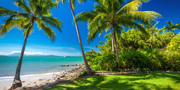 port-douglas-shore-excursions