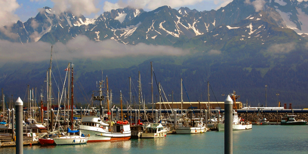 Seward-Shore-Excursions