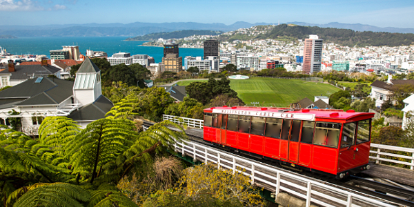 wellington-shore-excursions