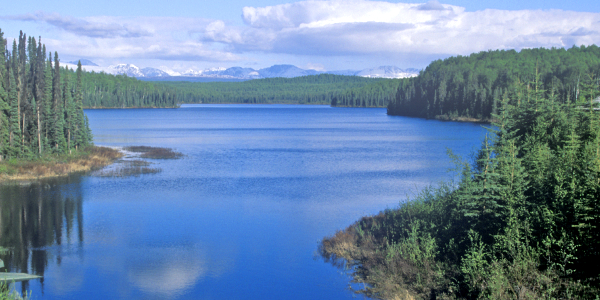Talkeetna-Shore-Excursions