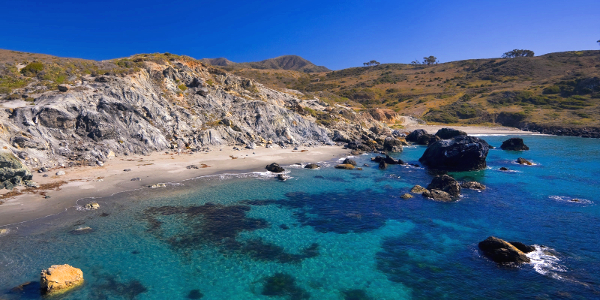 catalina-island-shore-excursions