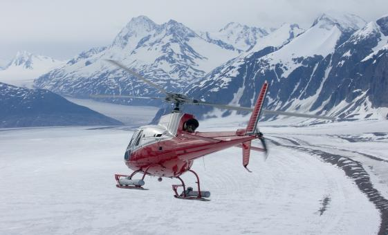Helicopter and Hiking Adventure in Denali Alaska (Denali National Park)