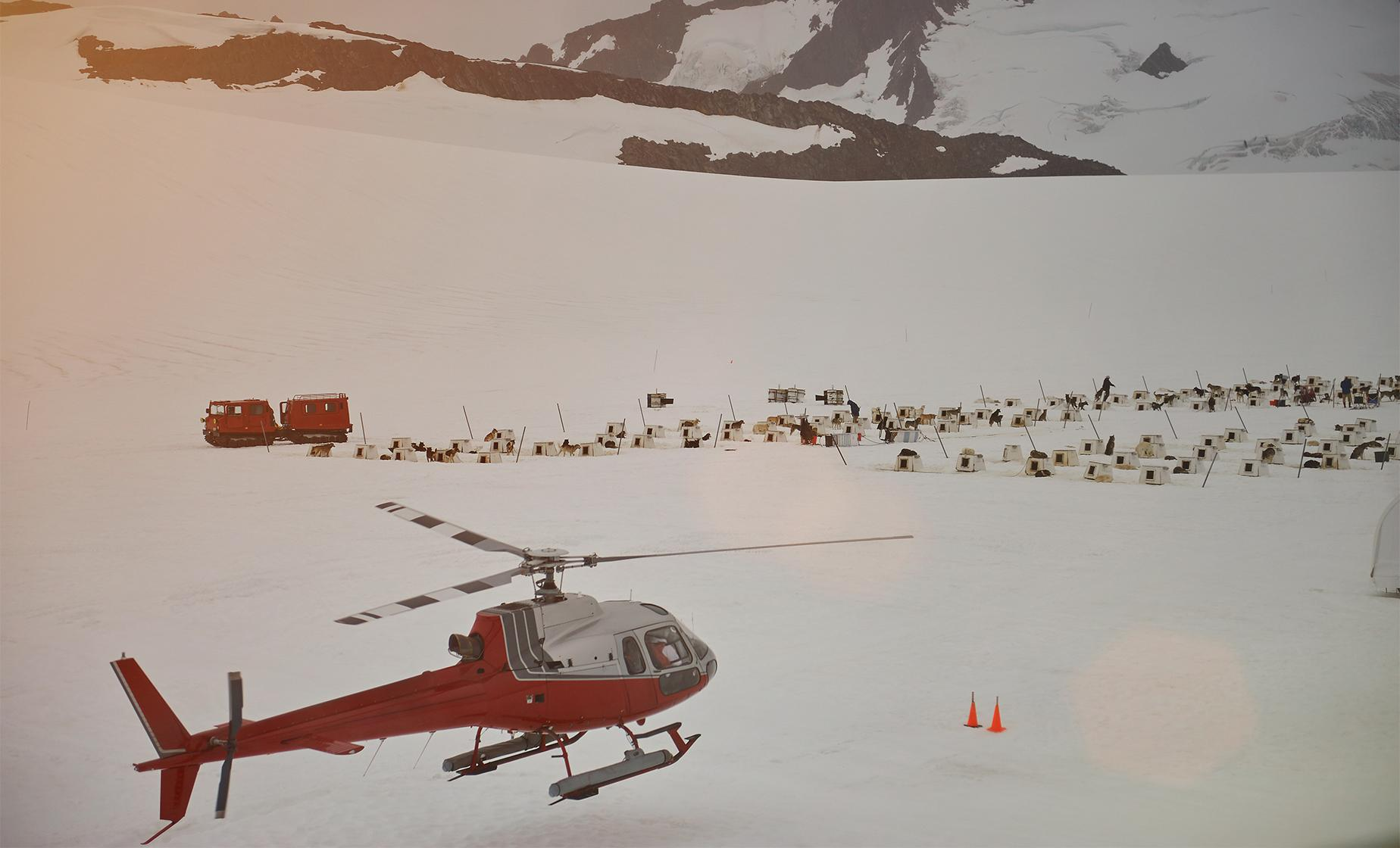 Helicopter Dog Sledding