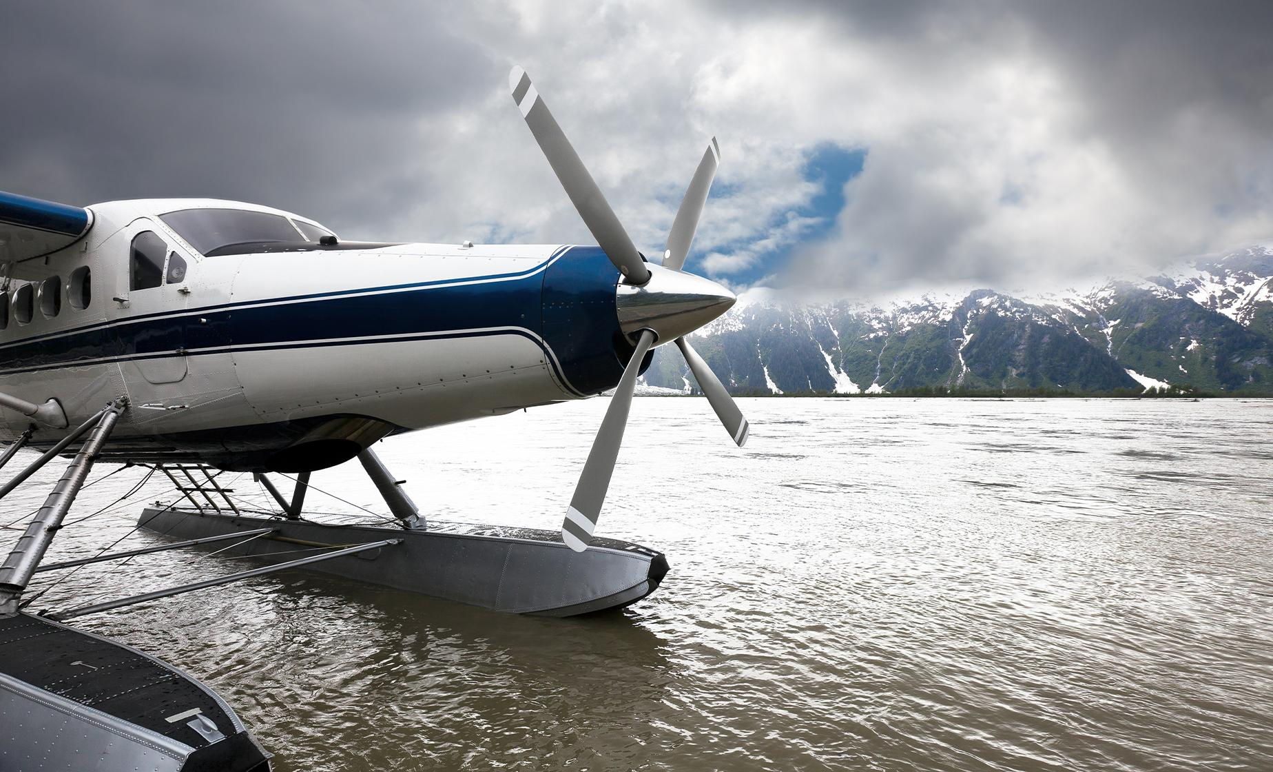 30-minute Seaplane Spectacular