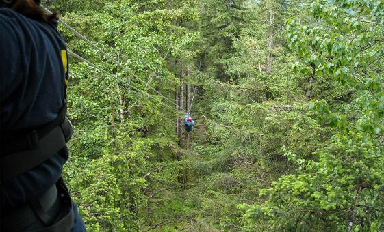 Rainforest Zipline Adventure Park Tour in Ketchikan, Alaska