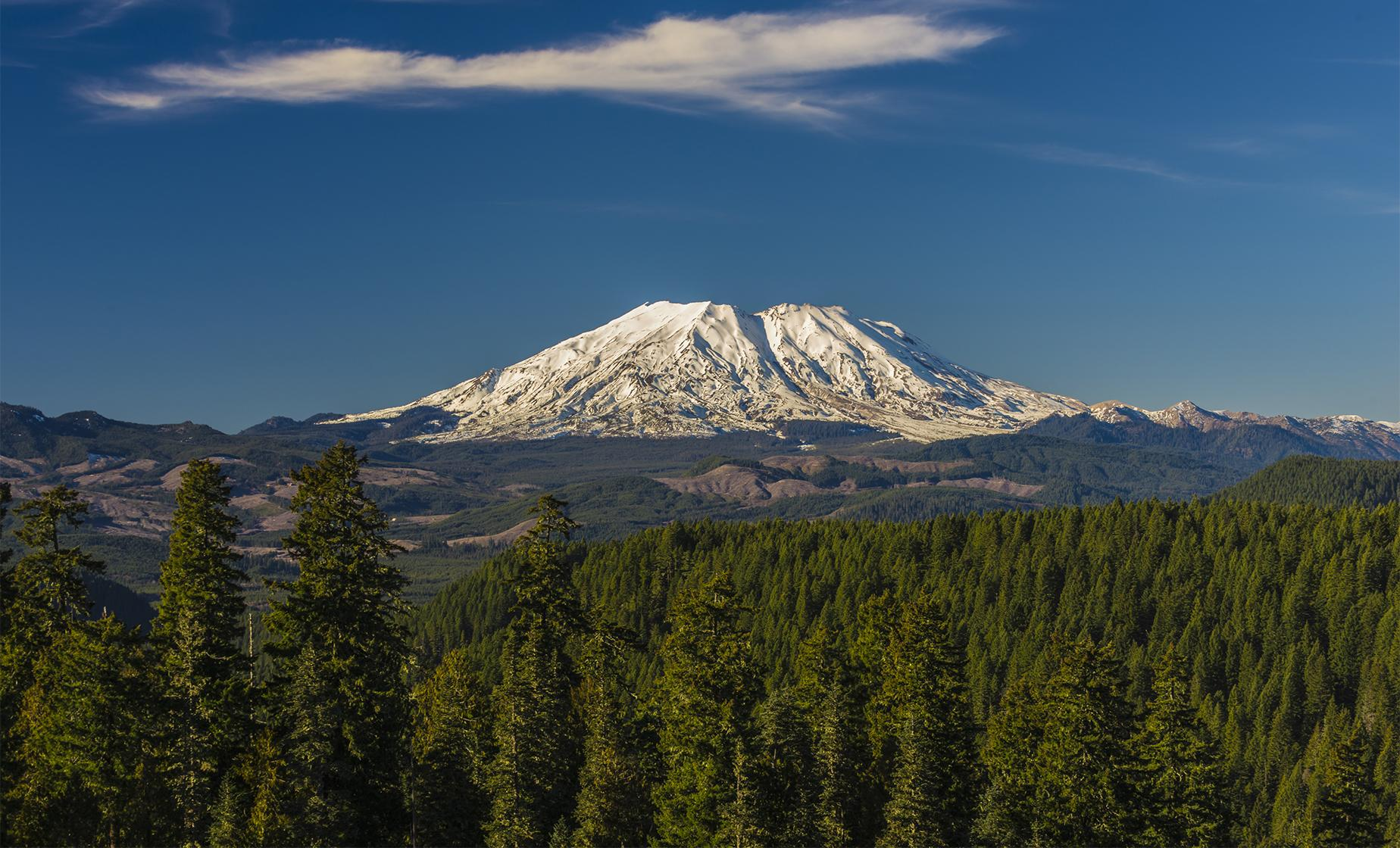 Mount St. Helens Full Day Small Group Tour from Seattle (Johnston Ridge Observatory)