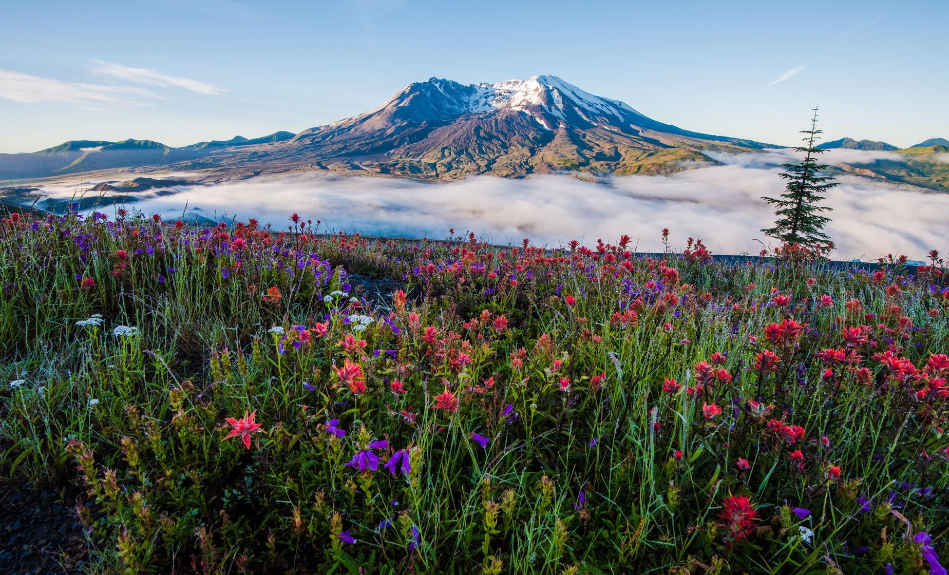 Private Mt. St. Helens