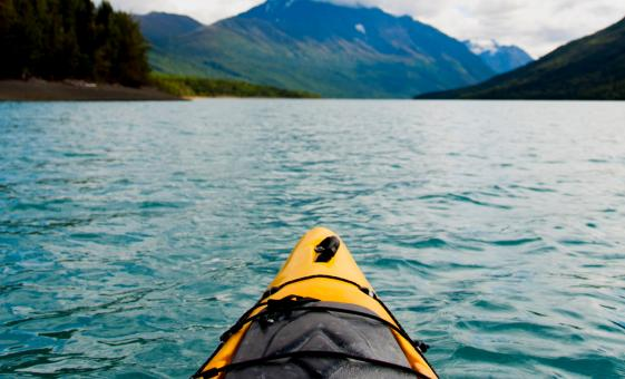 Chilkoot Lake Wildlife Kayaking