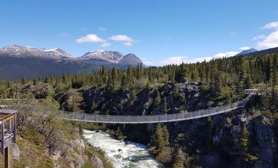 White Pass Summit and Yukon Suspension Bridge