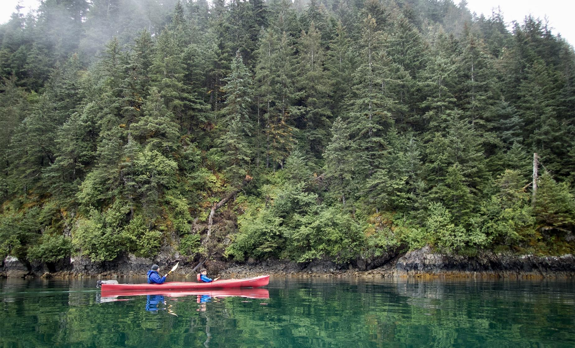 Exclusive Half Day Sitka Sound Cruise and Paddle