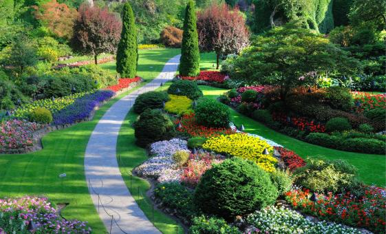 A Tale of Two Gardens - Butterfly & Butchart Gardens