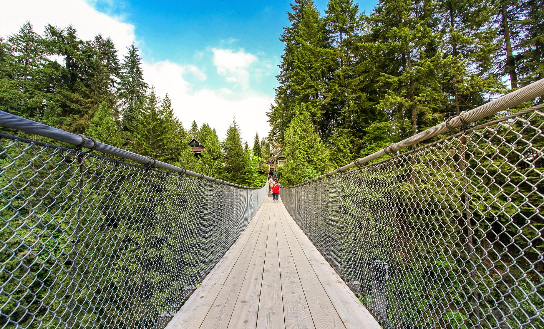 North Shore Capilano & Grouse Mountain Tour in Vancouver