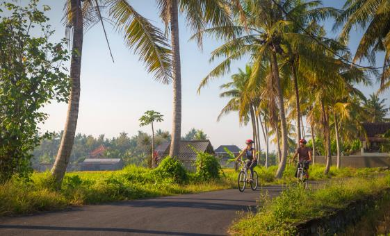 Bali Downhill Cultural Cycling Adventure