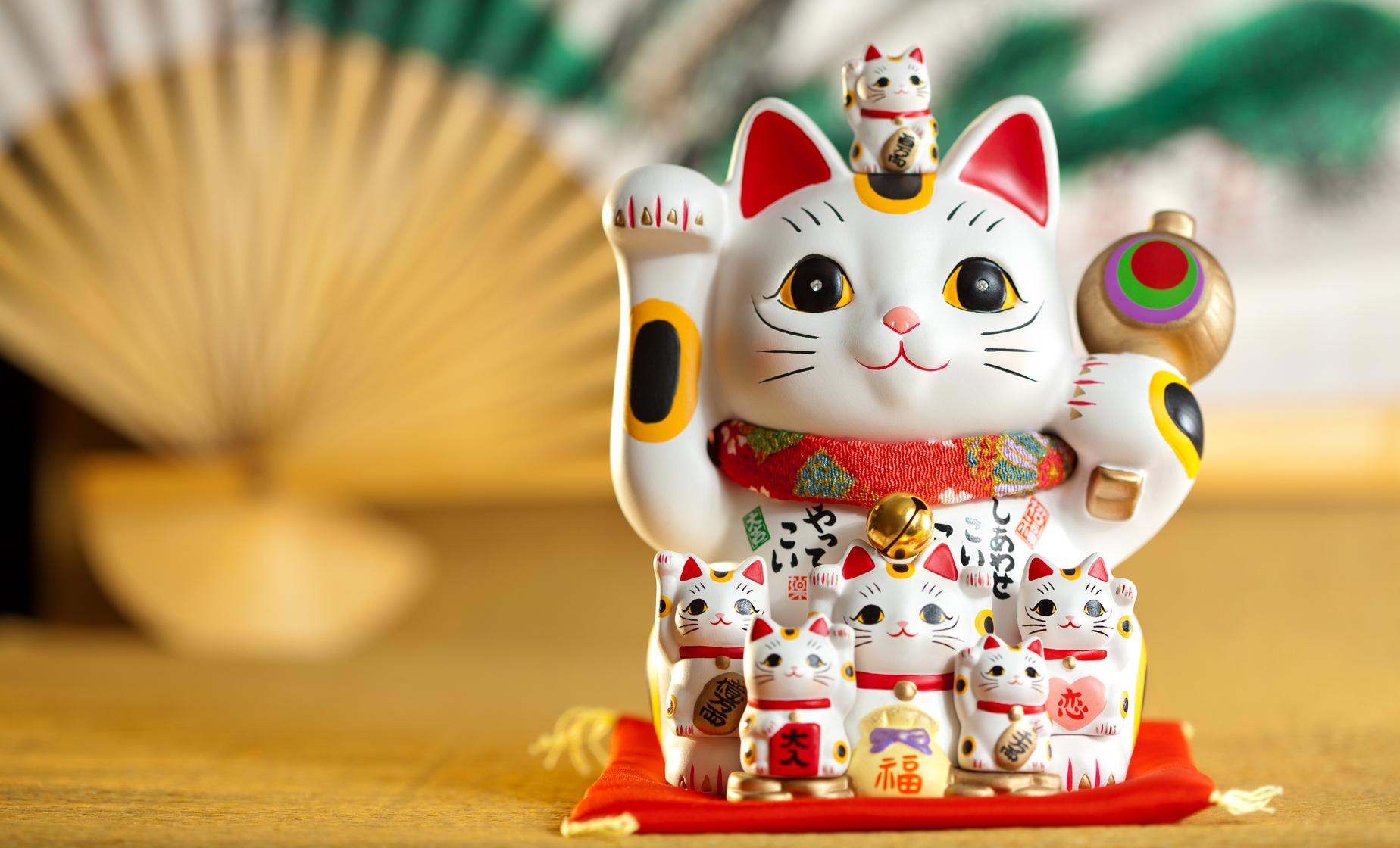 Japan's Cultural Curiosities