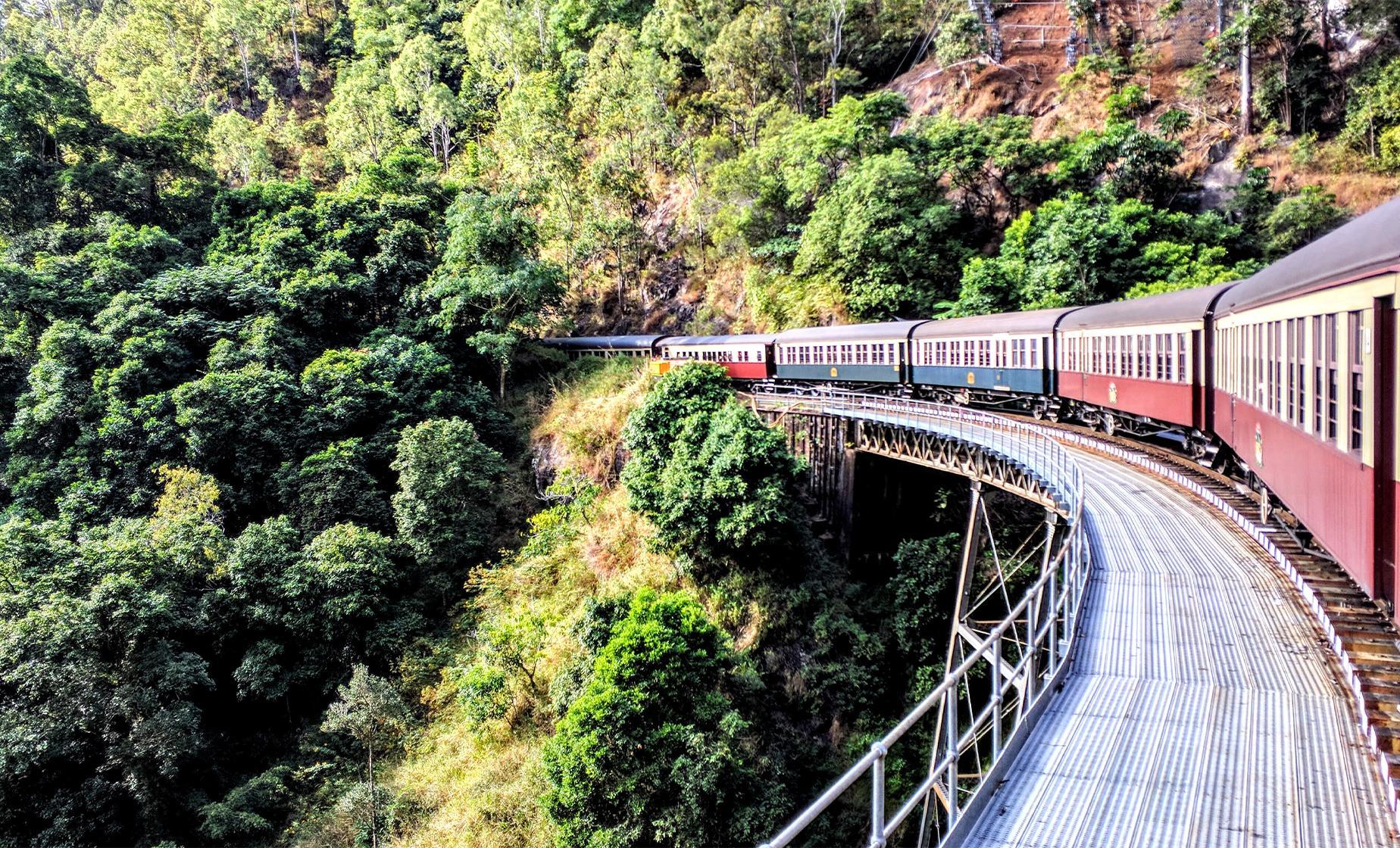 Skyrail and Train Combo