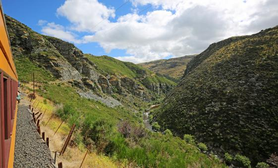 Taieri Gorge Journey with Dunedin