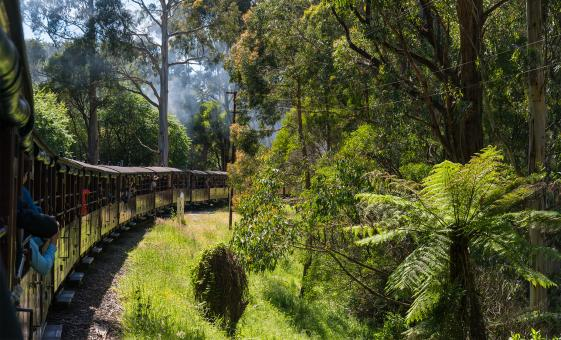 Steam Train, Yarra Valley and Healesville Wildlife Sanctuary Day Tour in Melbourne