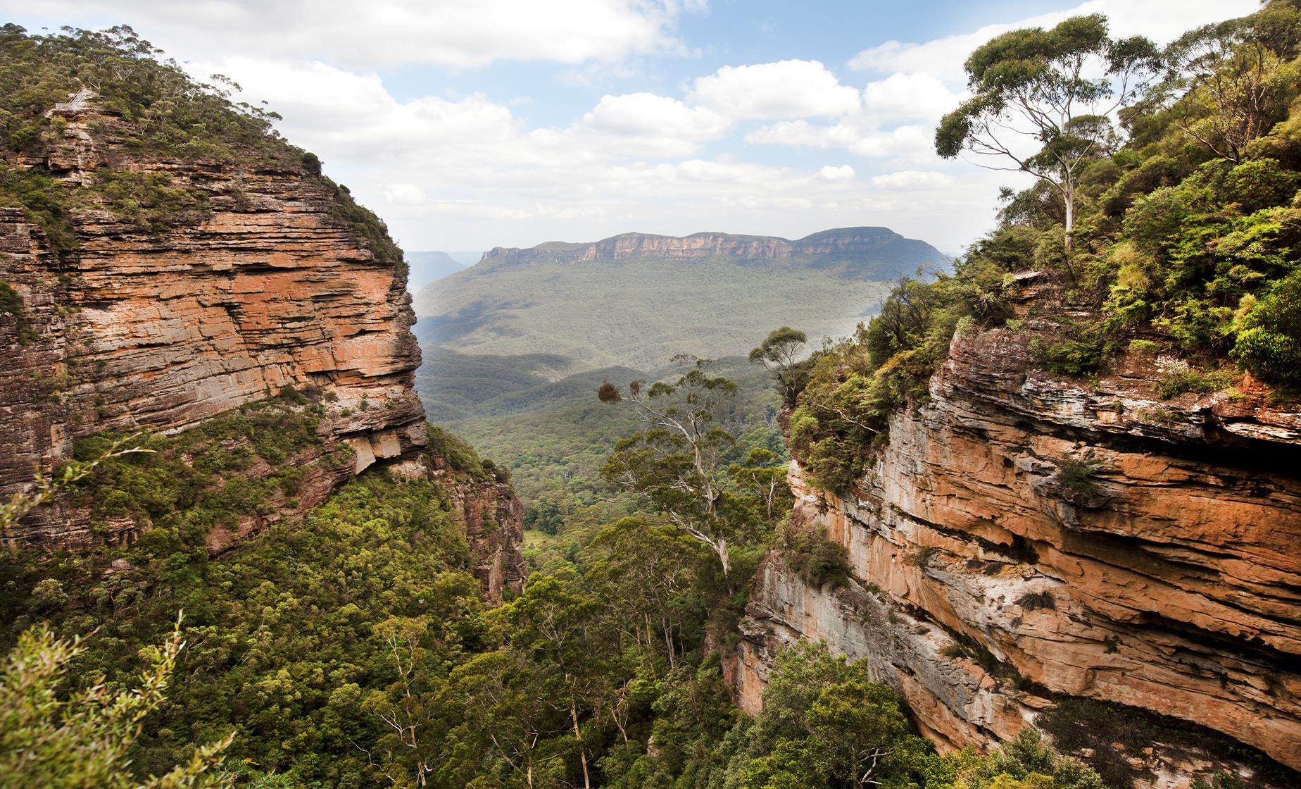 Blue Mountains National Park Trek