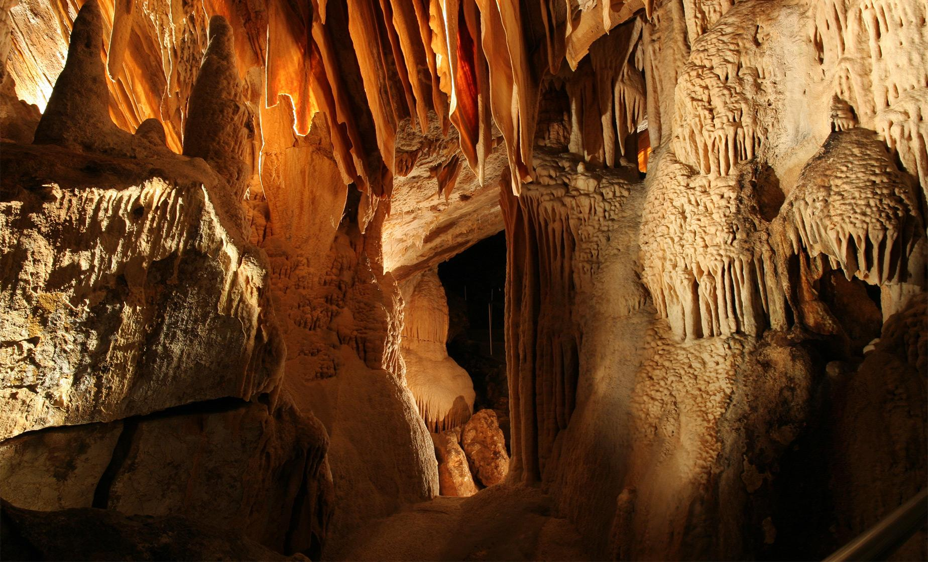 Blue Mountains and Jenolan Caves Day Tour in Sydney