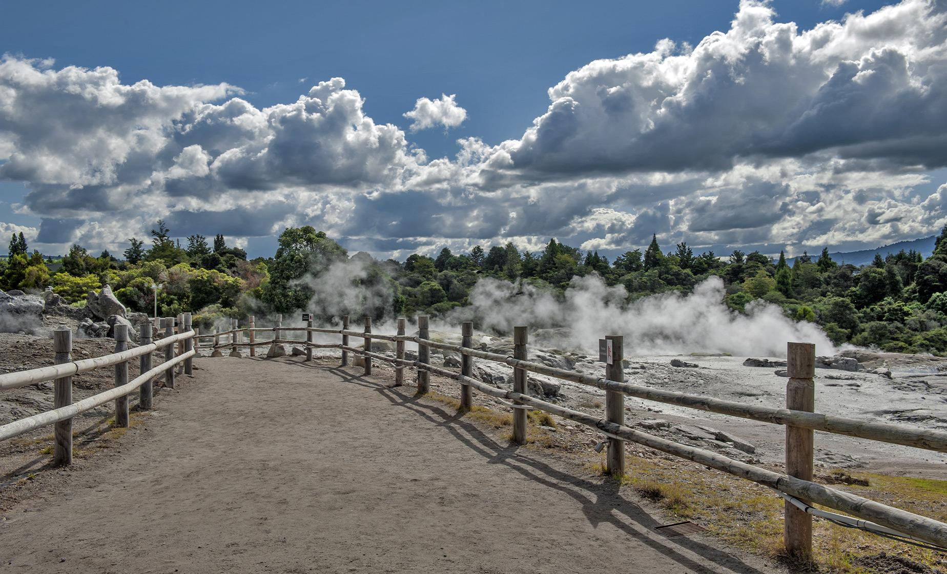 Rotorua Te Puia & Hells Gate