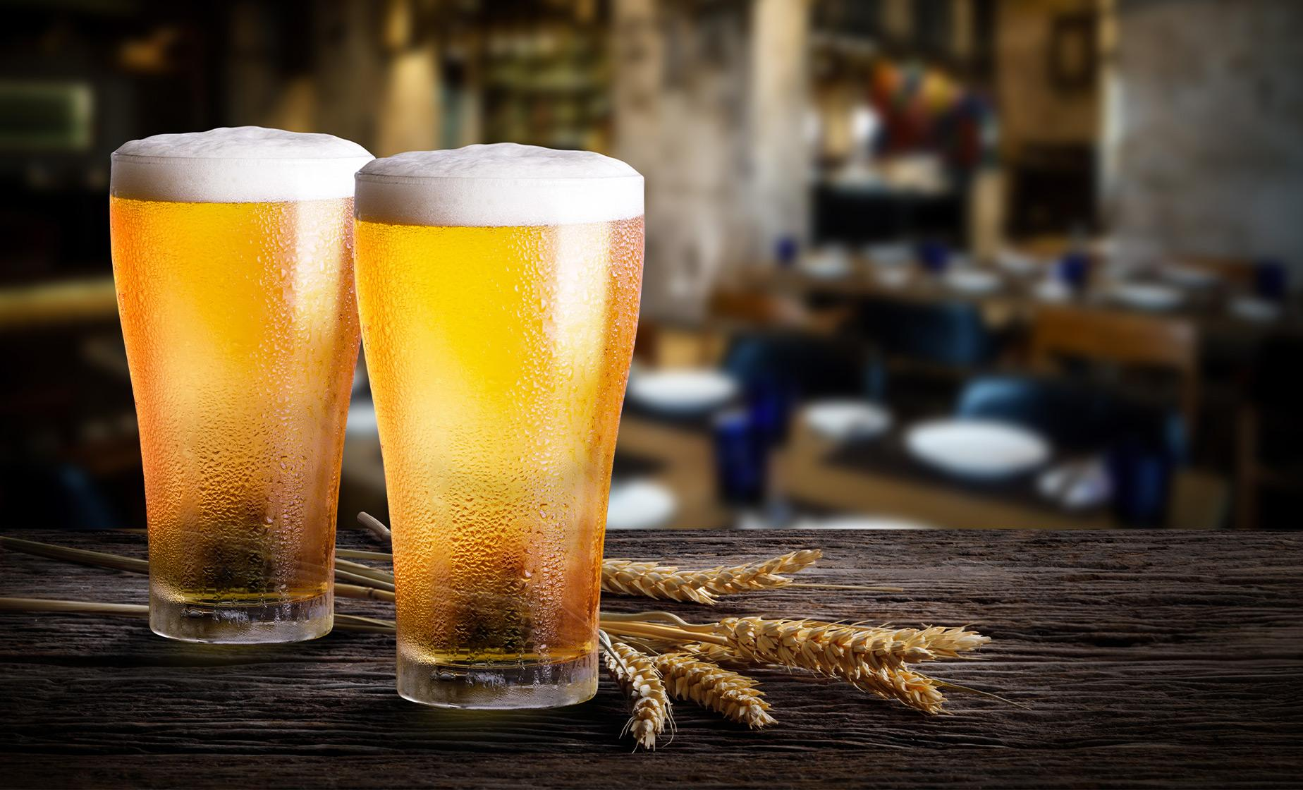 Craft Beers in Wellington Tour