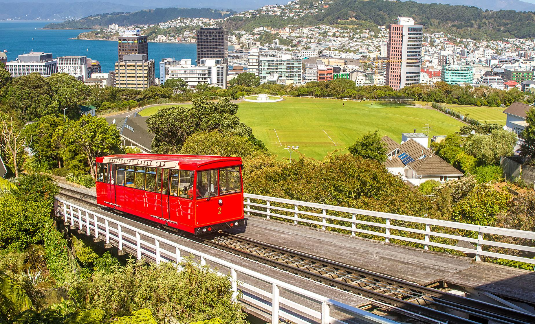 Full Day Wellington Tour