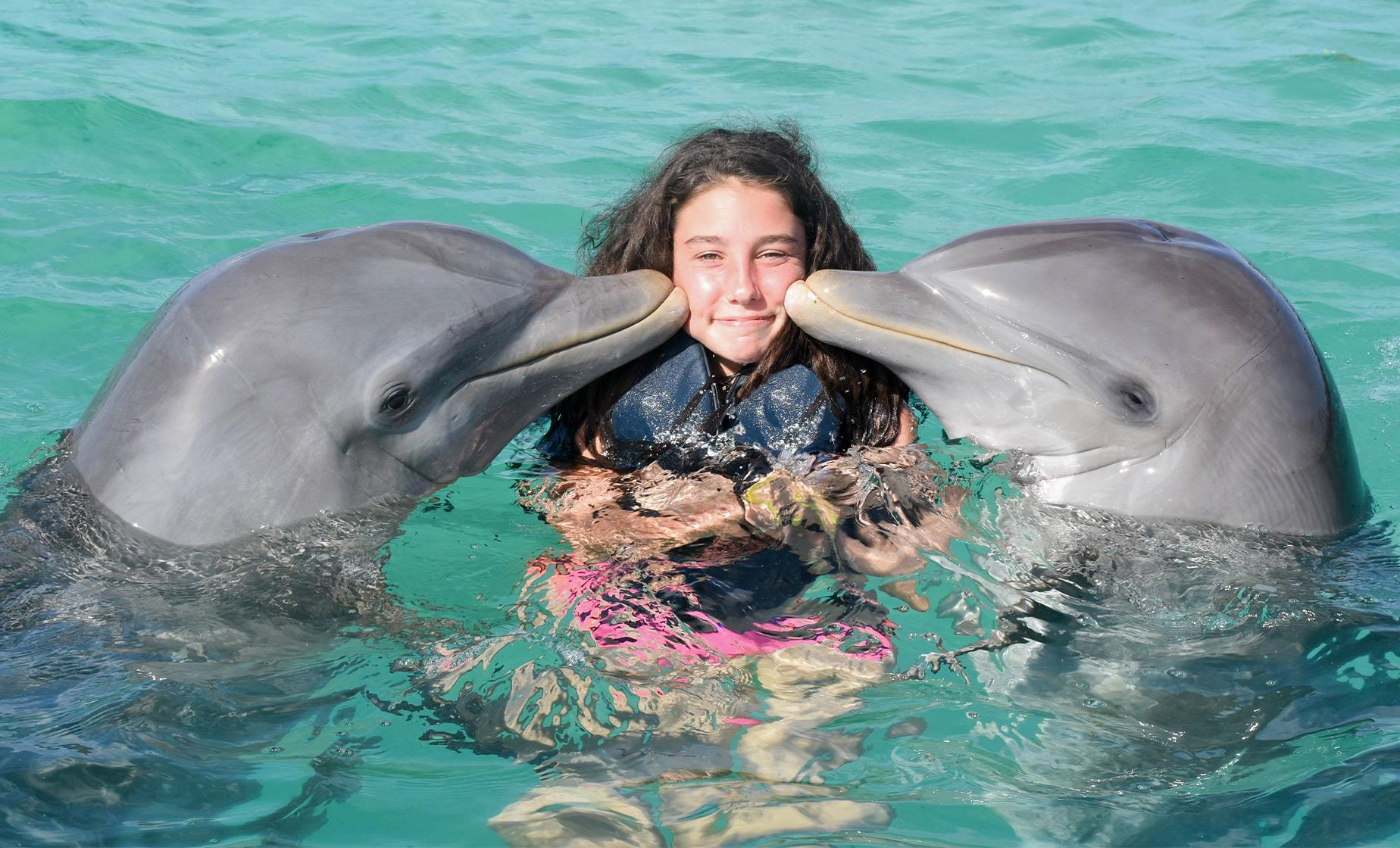 Bermuda Cruise Excursions | Dolphin Swim Adventure