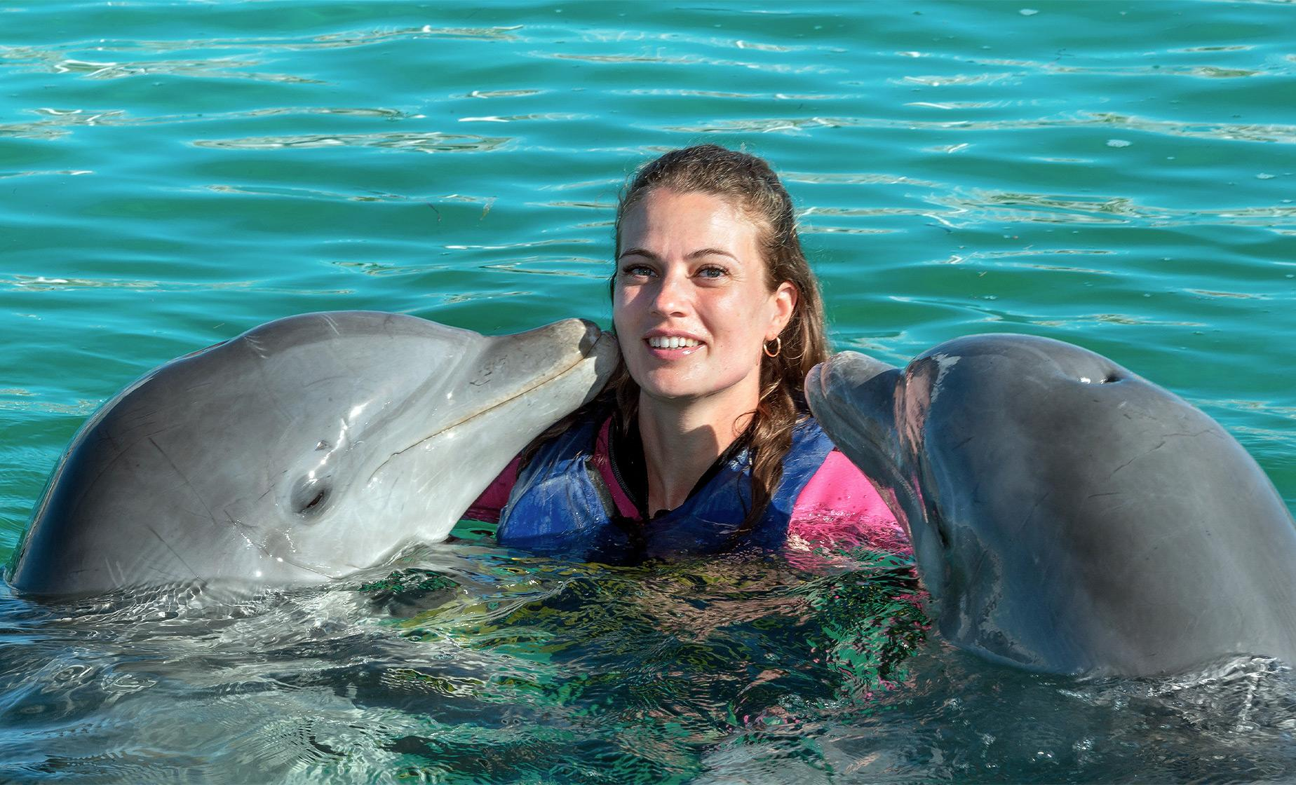Bermuda Shore Excursions | Dolphin Swim Encounter