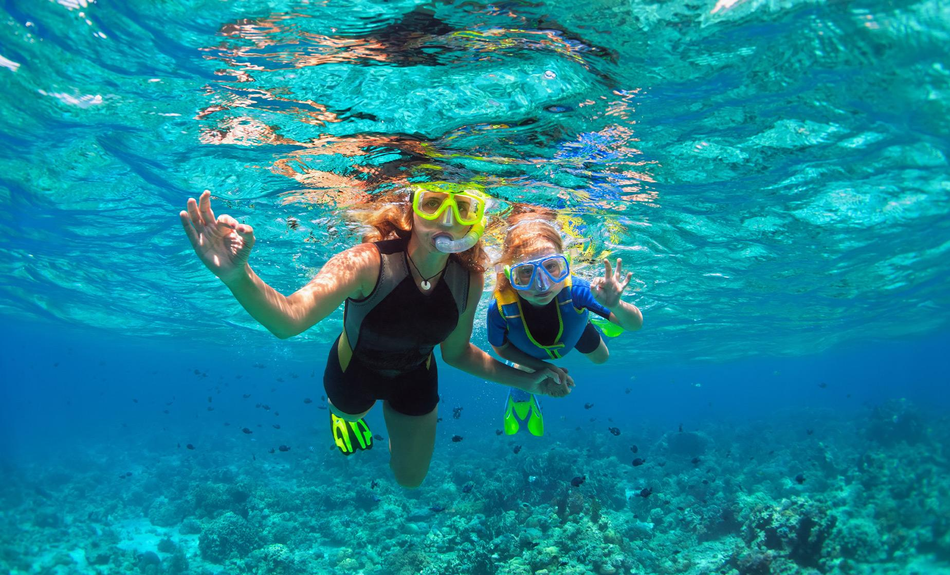 Bermuda Shore Excursions in Hamilton | Best Bermuda Snorkel Adventure in Hamilton