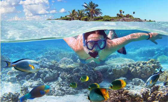 Private Snorkel Adventure