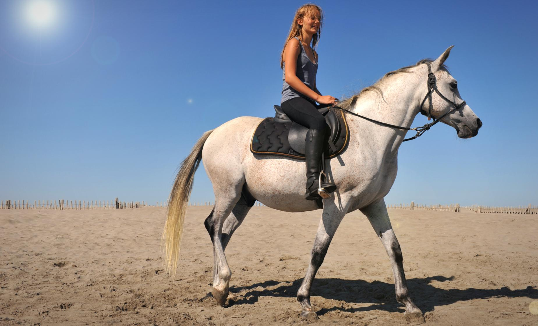 Horseback Ride: Northeast Coast & Sand Dunes
