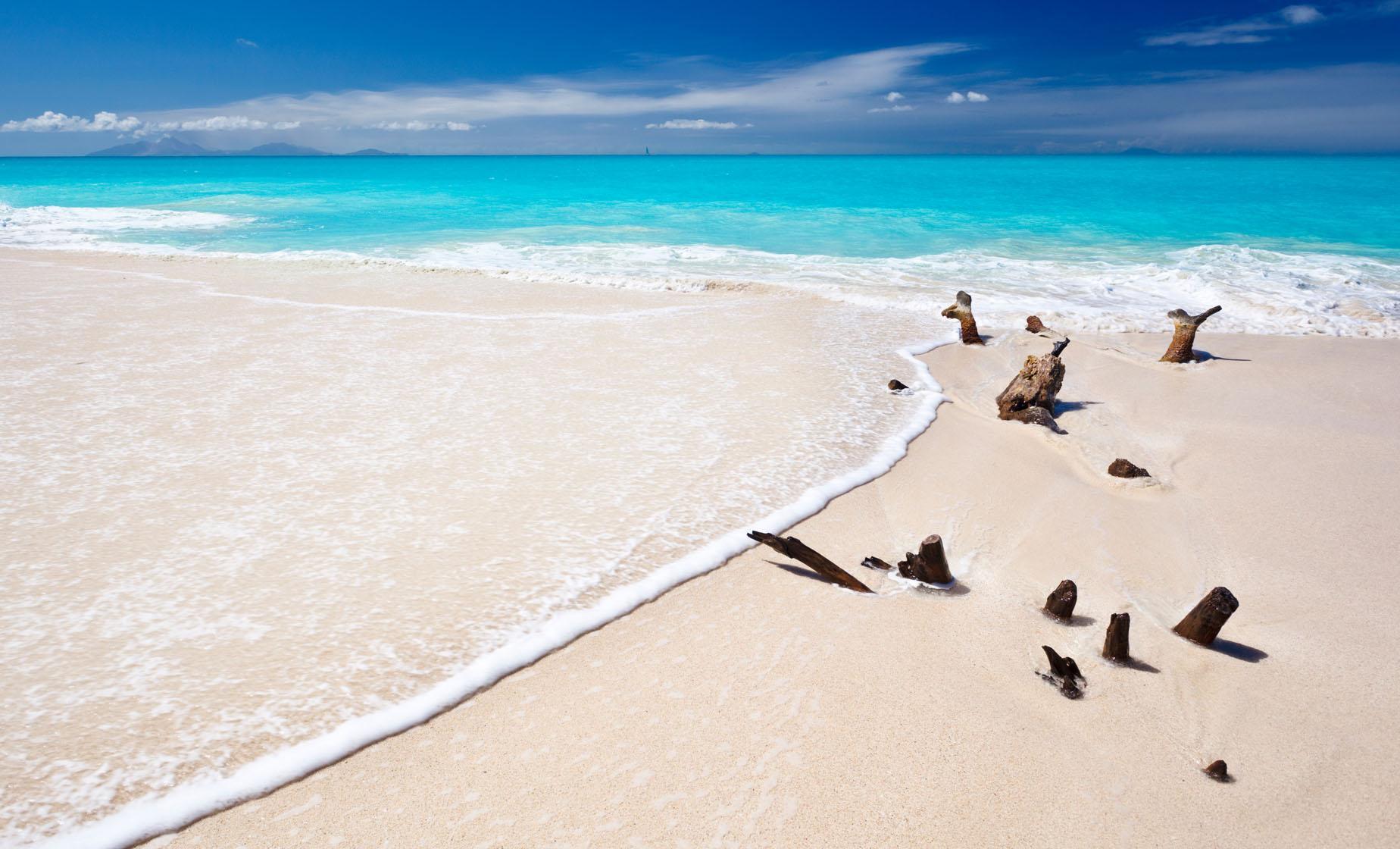 Classic Beach Day