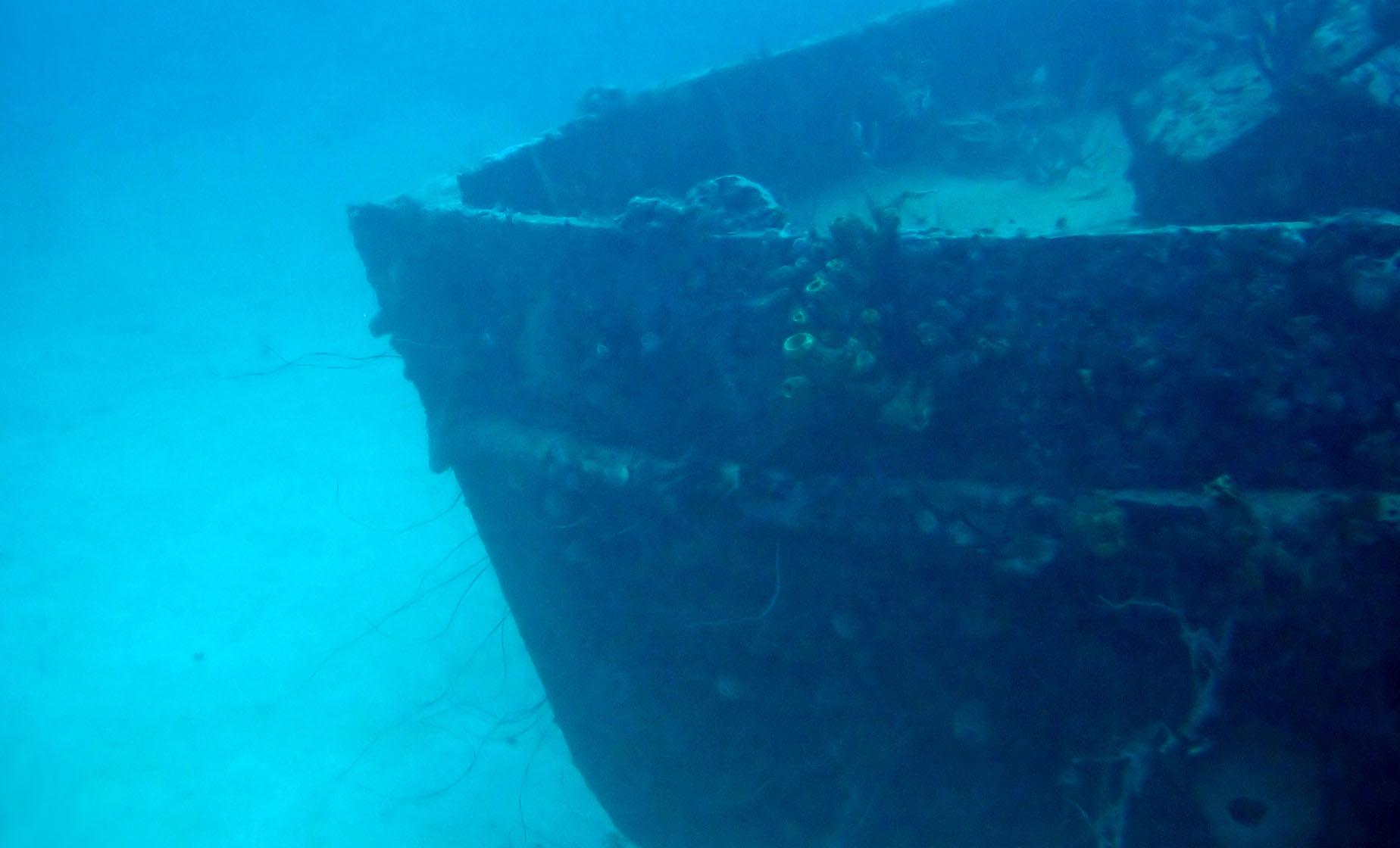 Small Group Shipwreck Snorkel in Barbados Buffet Lunch Carlisle Bay Marine Park