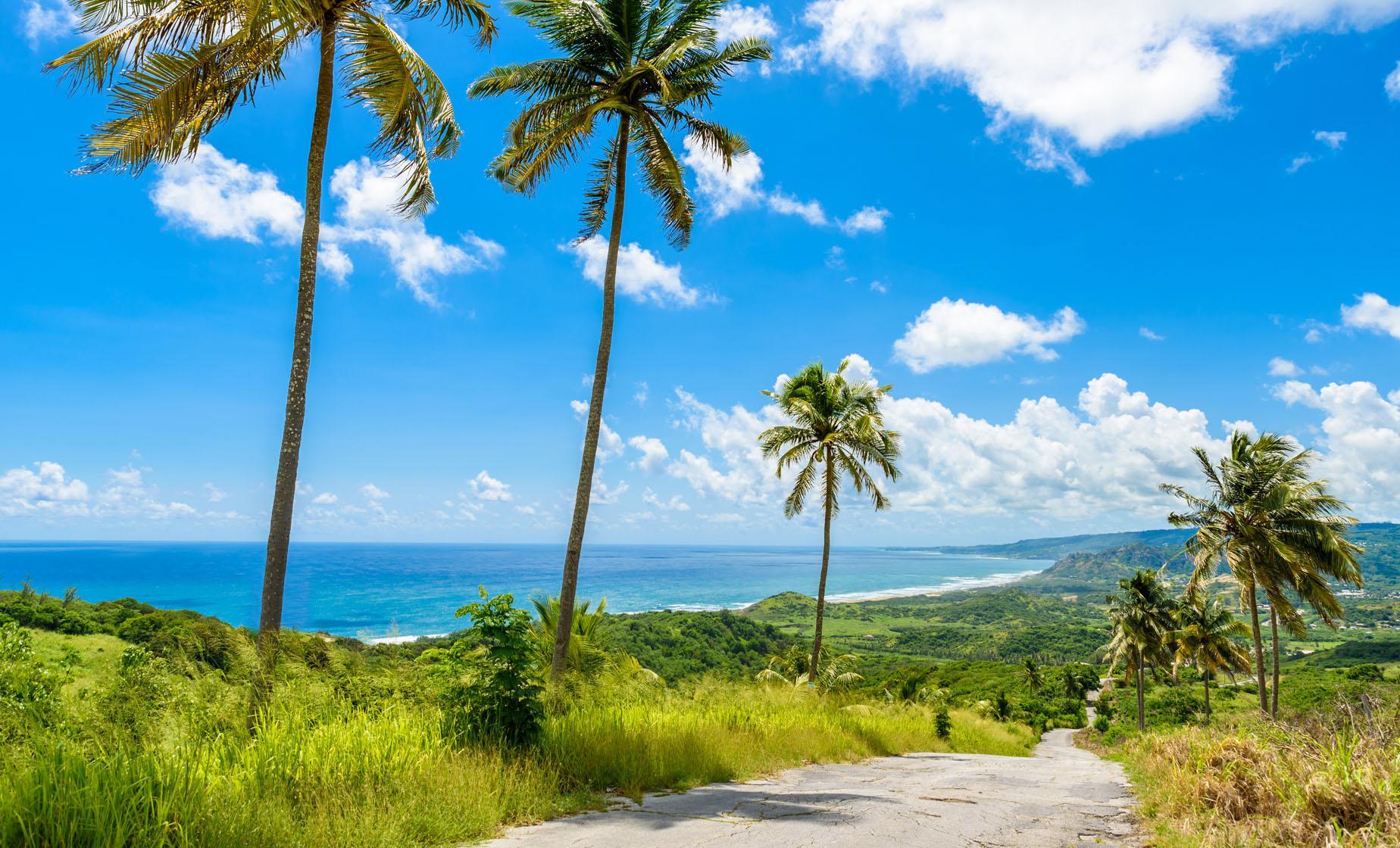 Bajan Paradise