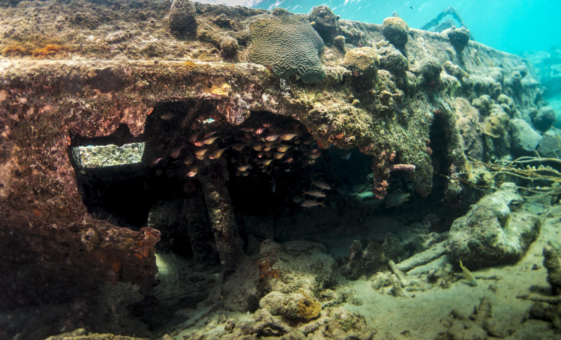 Sunken Tugboat and Reef Snorkel in Curacao Fort Beekenburg