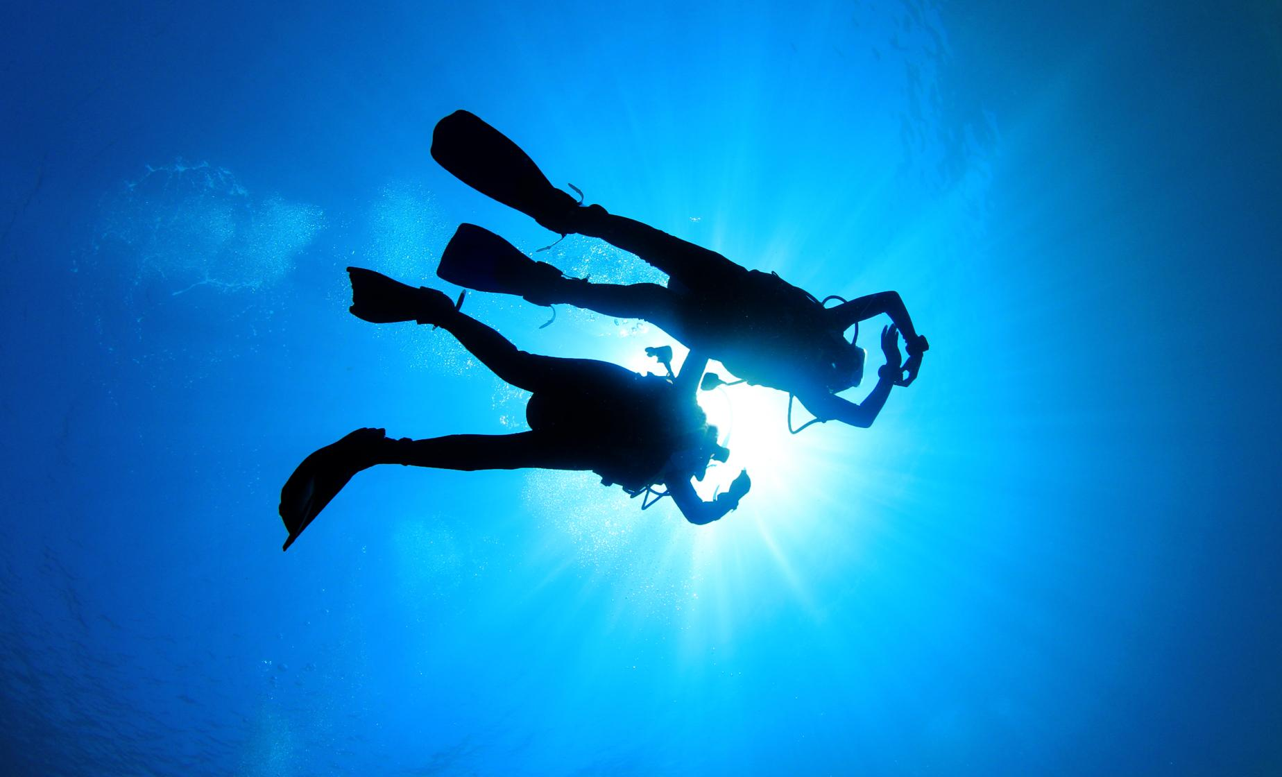 Discover Scuba 2 hour Cozumel Cruise Excursion
