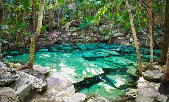 Eco-Park Adrenaline Adventure: Zipline, Caves and Cenote Swimming