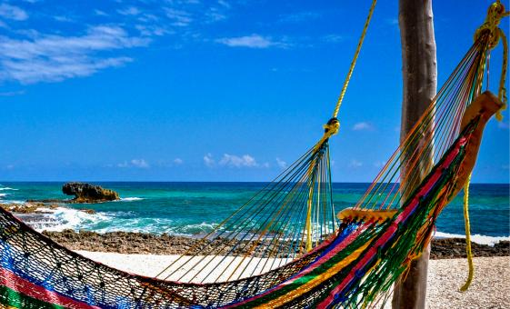 Cozumel Beach, Culture, Food and Wild Side By 4x4