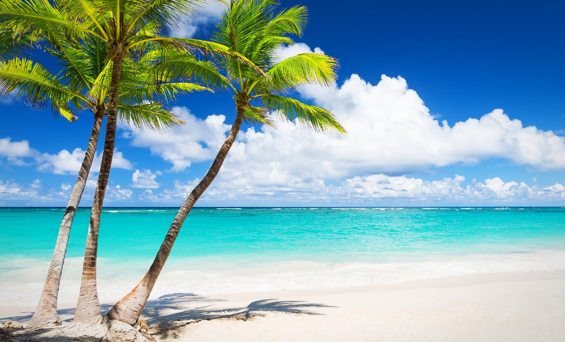 Cozumel Passion Island Tour