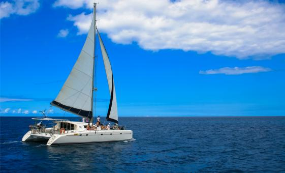 Cozumel's Jeep And Catamaran Snorkel Combo Tour