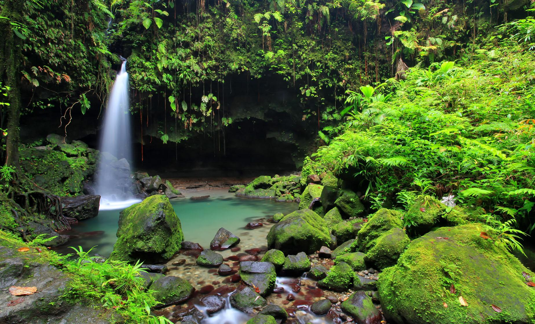 Dominica Favorites Special Tour (Trafalgar Falls, Emerald Pool, Trois Pitons National Park)