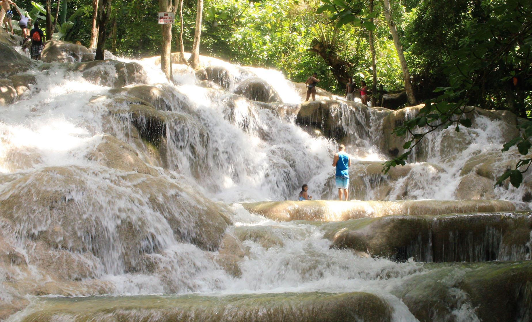 Private Dunn's River Falls and Area Highlights
