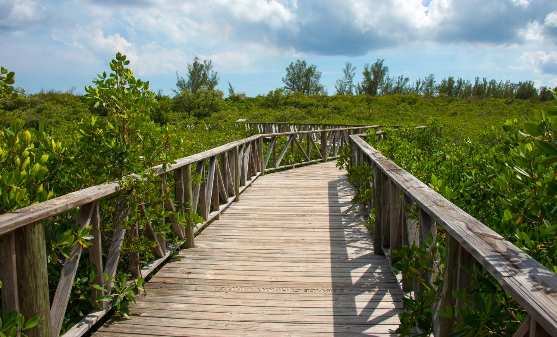 Lucayan National Park & Cave Tour