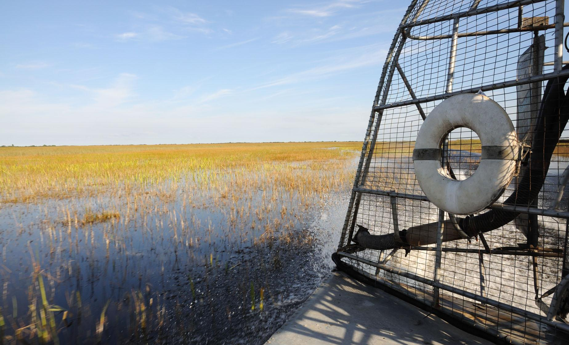 Florida Everglades Airboat and Wildlife Experience Tour Fort Lauderdale