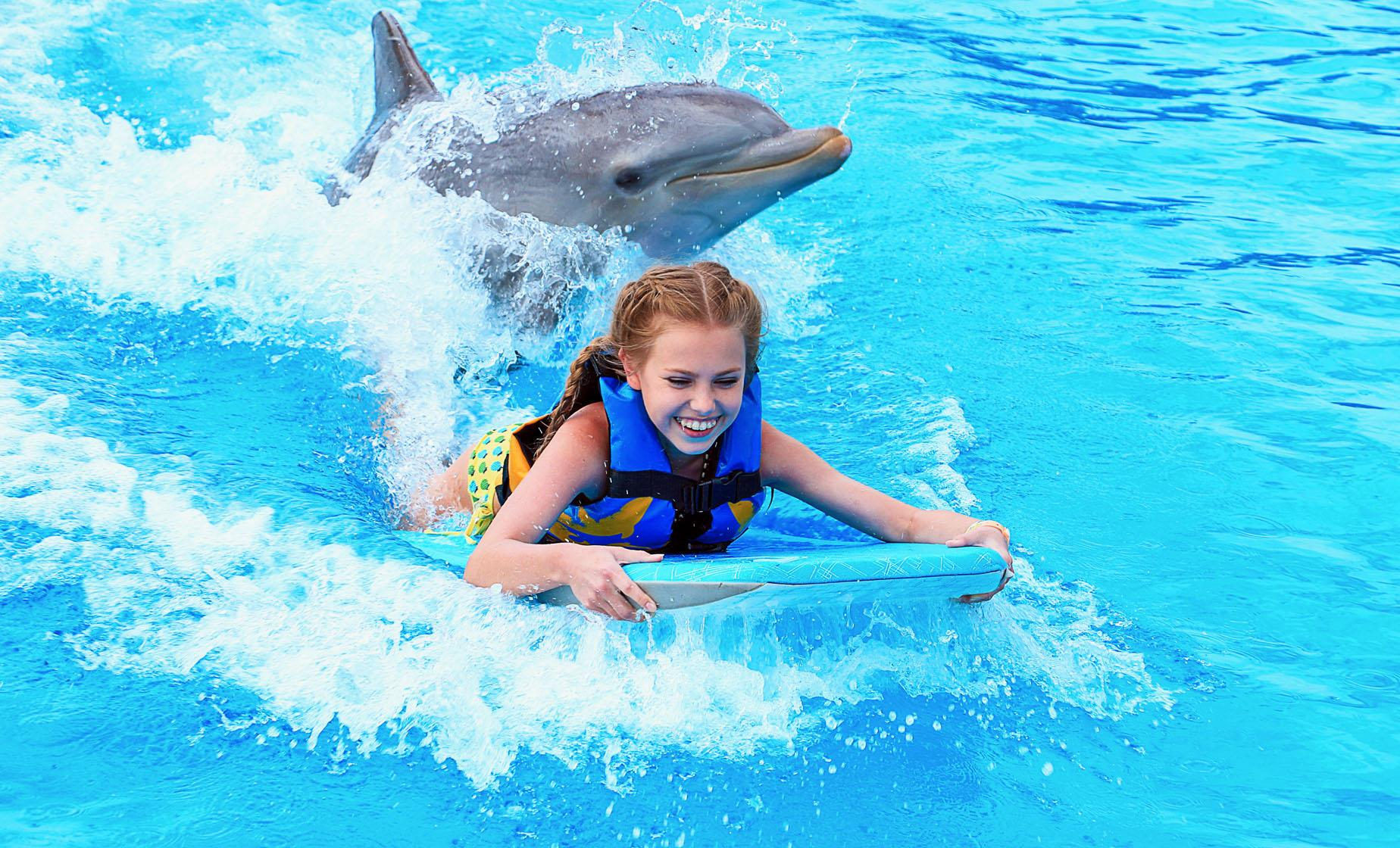 Dolphin Swim Adventure and Turtle Farm