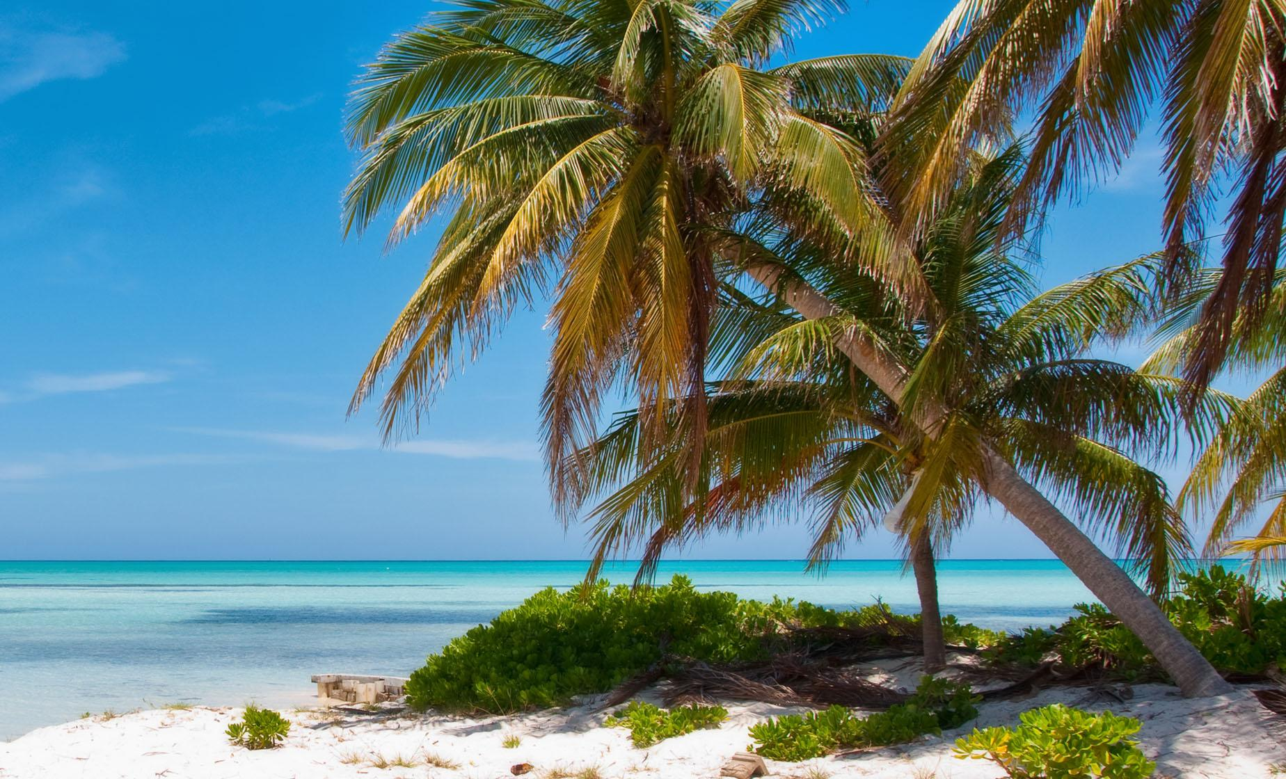 Grand Cayman Far Side Tour