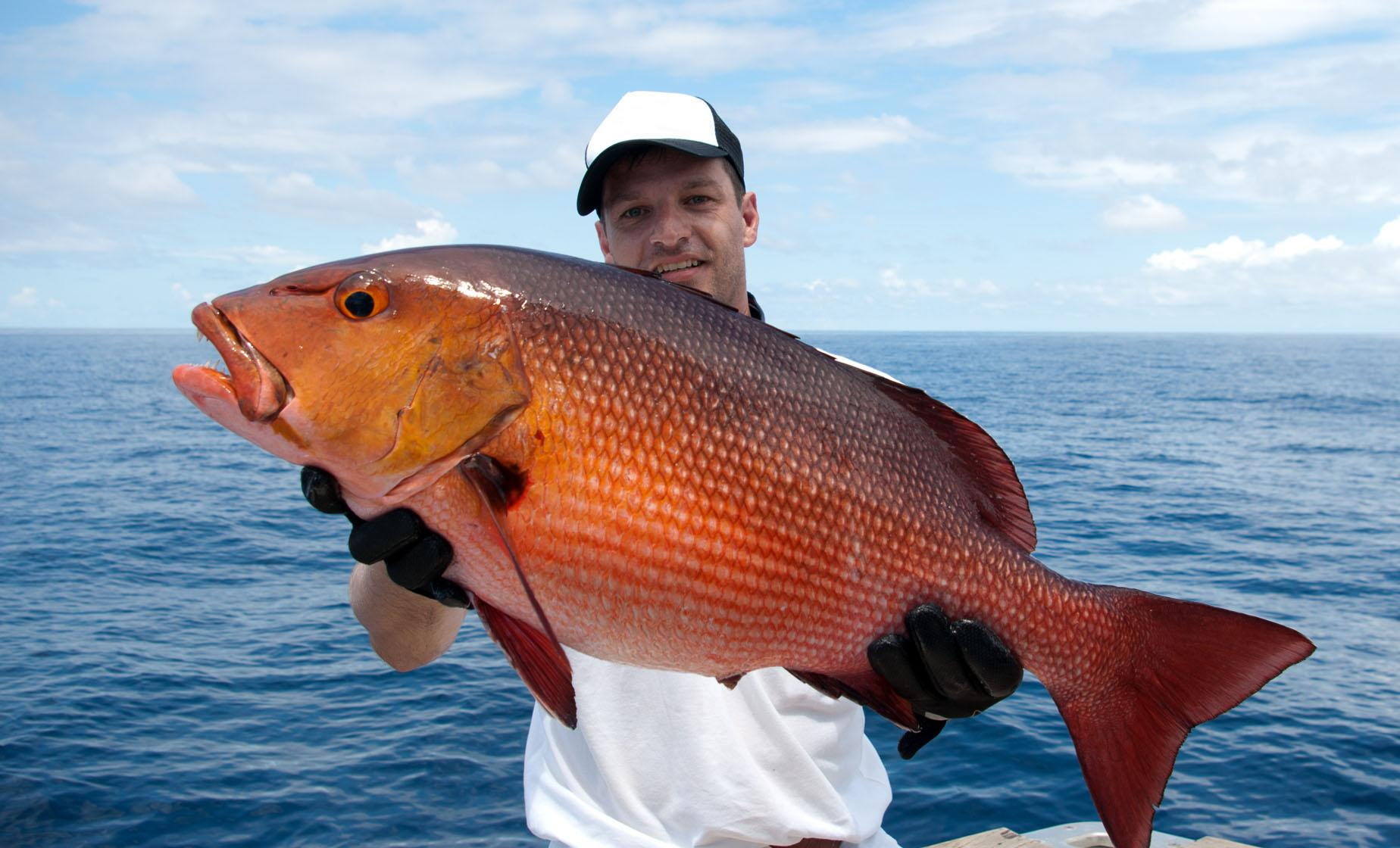 Private Half Day Reef Fishing Charter