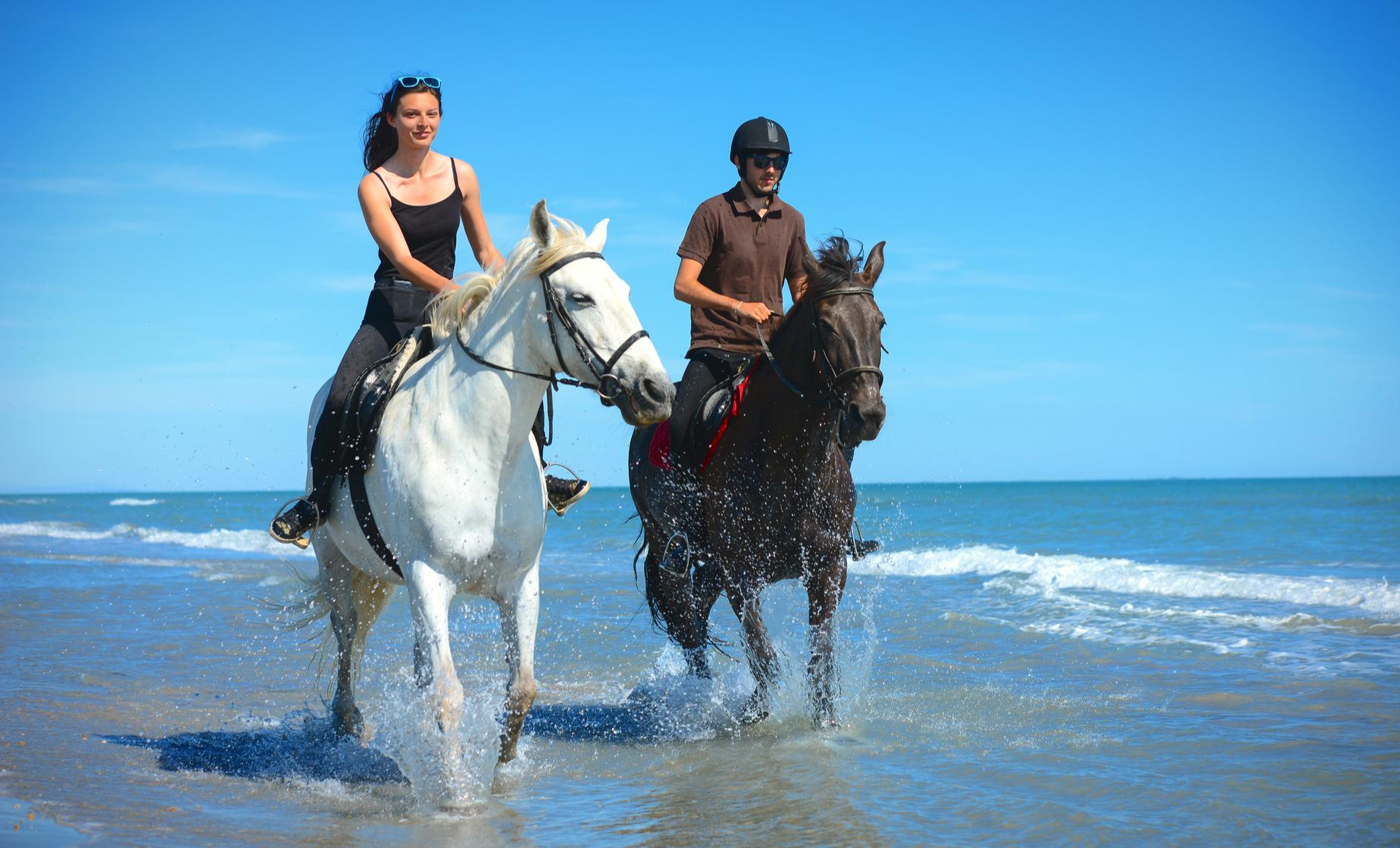 Grand Cayman Horseback Riding Tour in West Bay