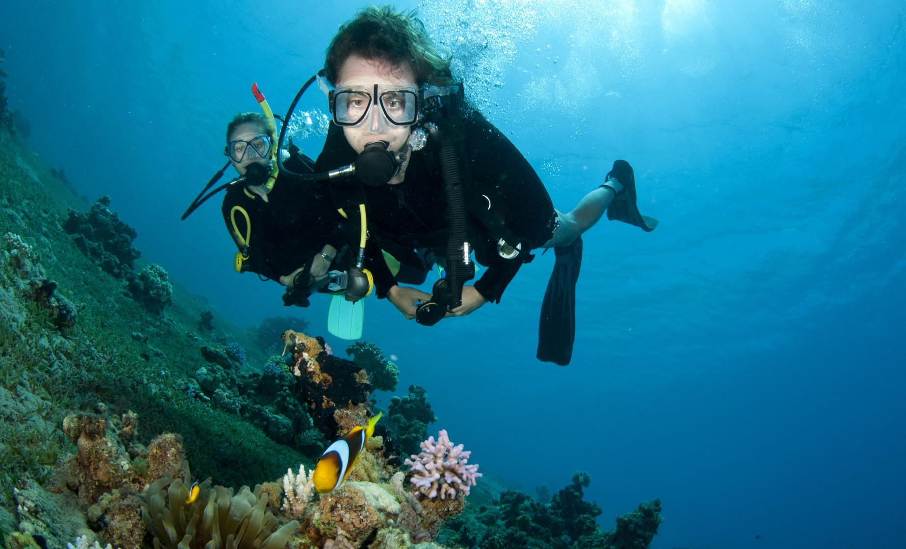 Grenada PADI Discover Scuba Diving Tour (Grand Anse Beach)