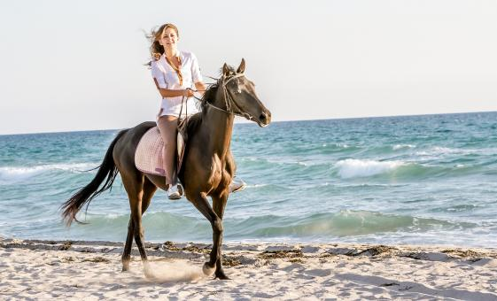 Horseback Ride and White Water Rafting in Montego Bay